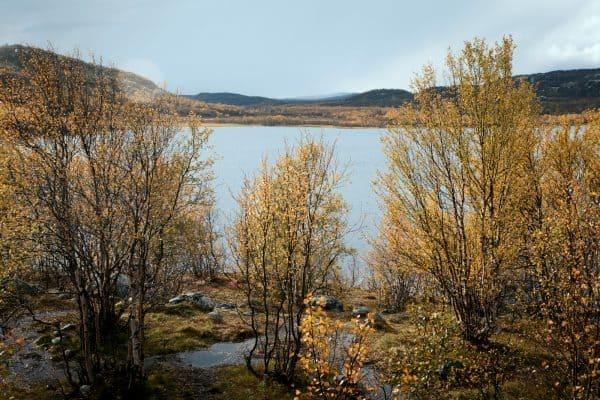 Озеро Питьевое в окрестностях Видяево
