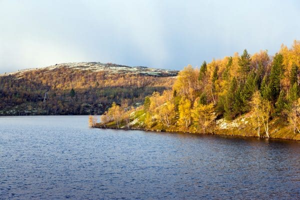 Озеро между Мурманском и Видяево