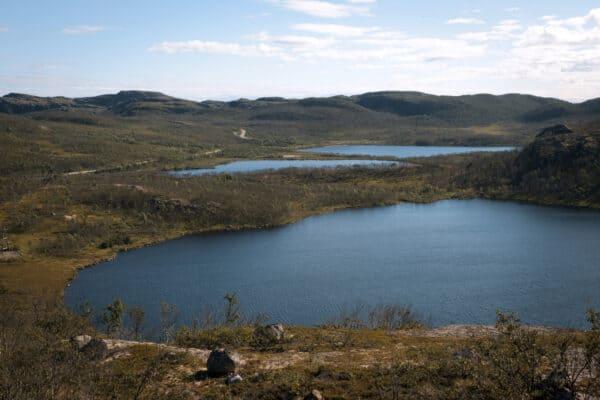 Окрестности озера Солтаярви между Видяево и Ара-Губой, август 2020 года