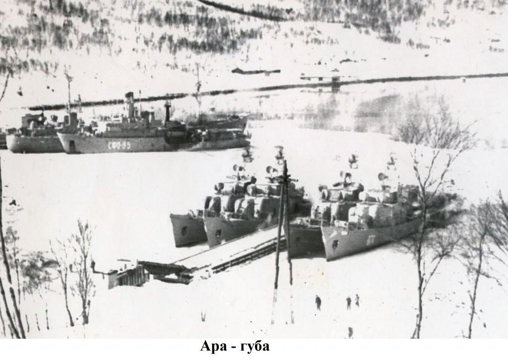 Противолодочные корабли в Ара-Губе